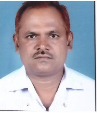 Shri Damusingh Panwar